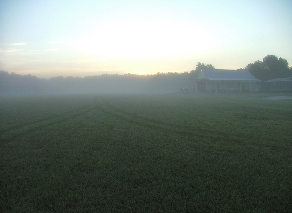 7-16am ground fog looking east